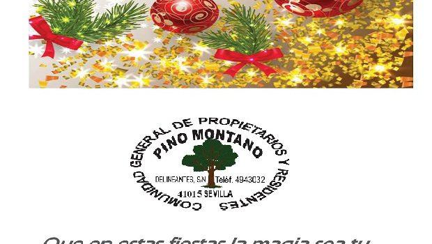 Navidad 2019 en Pino Montano